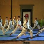 KarateZanshin